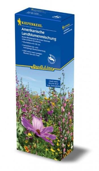 Kiepenkerl Profi-Line Blumenmischung Amerikanische Mischung 1kg