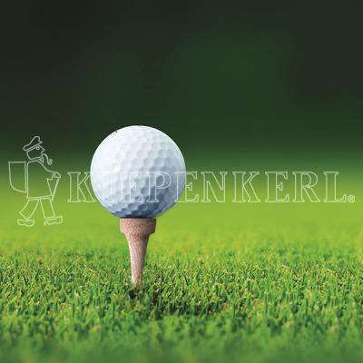 Kiepenkerl RSM 4.3 Golfrasen Abschlag 10kg