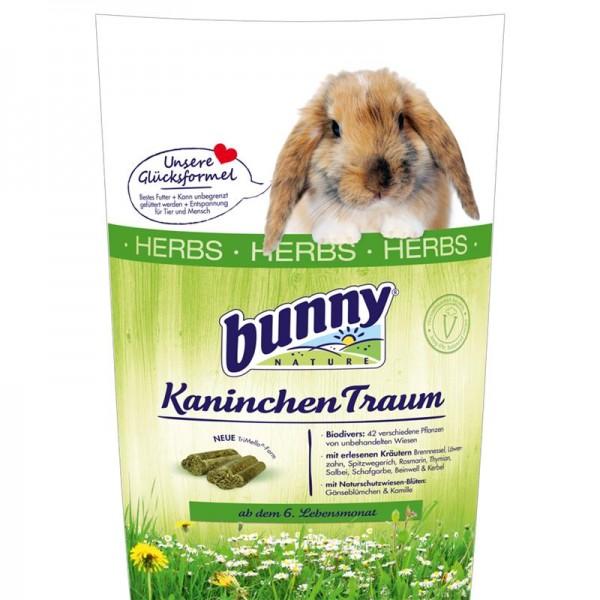 Bunny Kaninchen Traum herbs