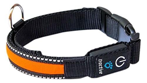 TRACTIVE LED Halsband orange