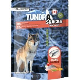 Tundra Skin+Coat Lachs 100g MHD07.08.21