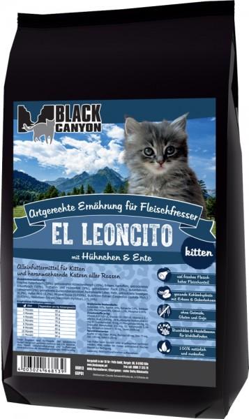 Black Canyon Cat El Leoncito