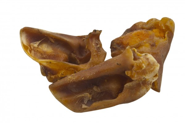 Schweineohrmuscheln 1kg
